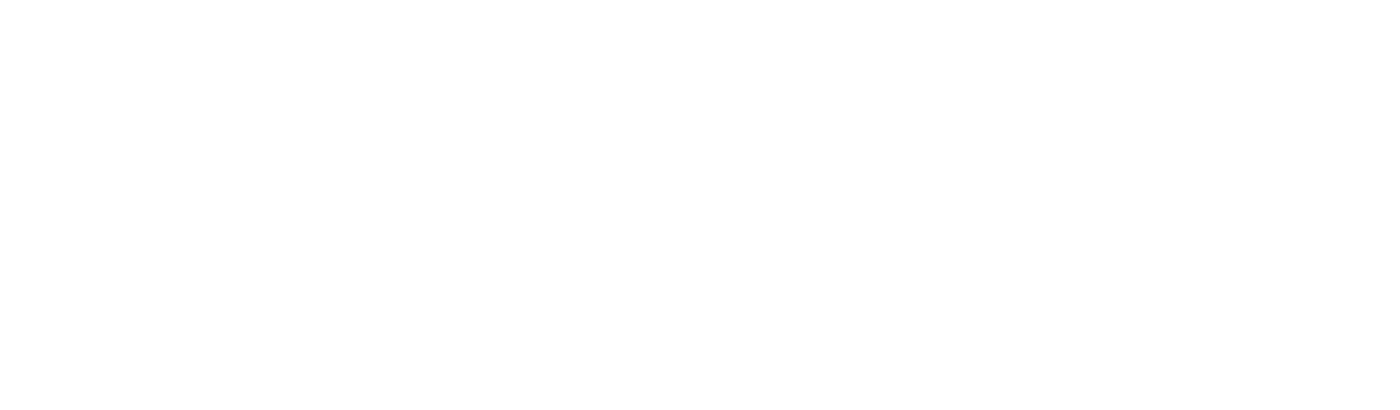 renault tribal